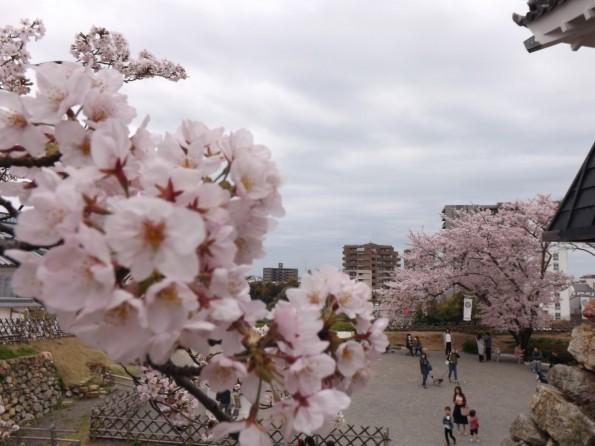 hamamatsushi_hamamatsucastle