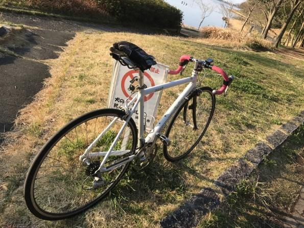 hamamatsushi_cycling