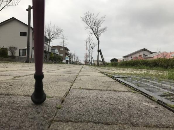 hamamatsushi_walking