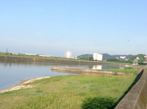 gamagorishi_sea (1)