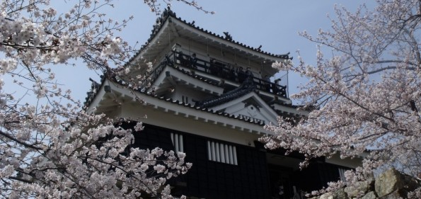 hamamatsu-castle2