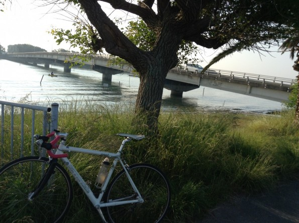 hamamatsu_hamanako_cycling (18)