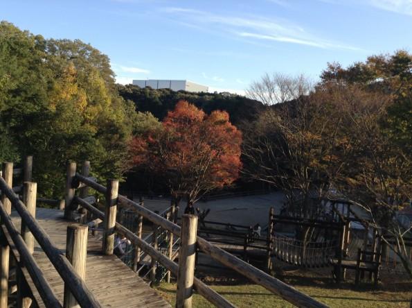 hamamatsu_miyakodapark201610-1