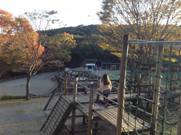 hamamatsu_miyakodapark201610-2