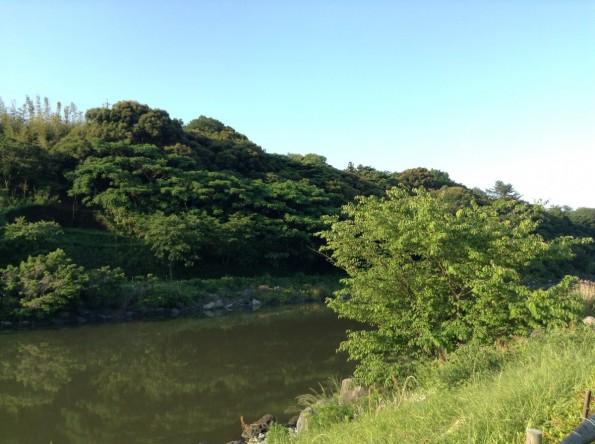 hamamatsu_sanaruko_cycling (5)