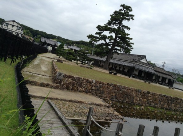 kosaishi_sekisyo_history (4)