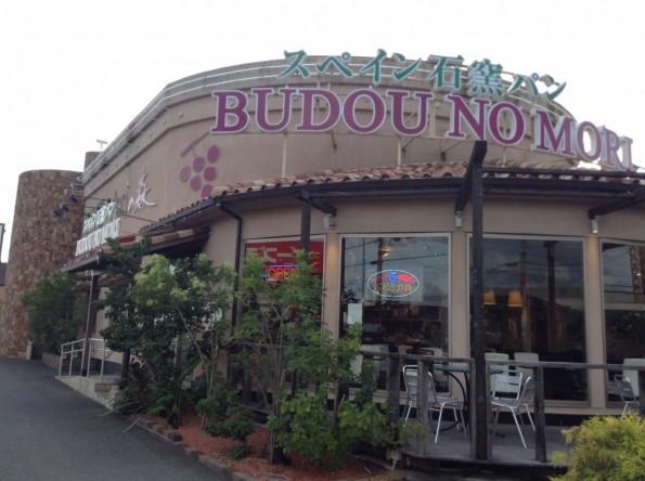 toyokawashi_budounomori_cafe (1)