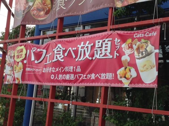 toyokawashi_catscafe (2)