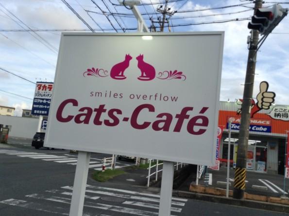 toyokawashi_catscafe (3)